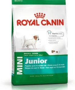 غذای خشک سگ نژاد کوچک، 2 تا 10 ماه، 800 گرمی، برند رویال کنین
