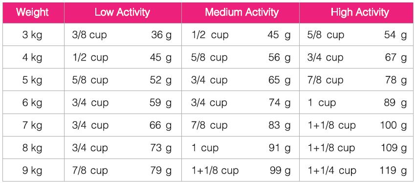 مقدار مصرف غذای خشک گربه بالغ داخل خانه سلبن